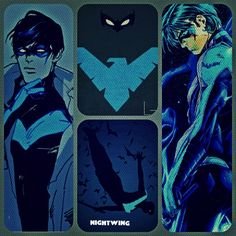 Nightwing pictures in one poster.