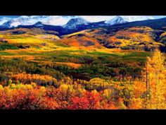 Beauty in our great state reaches one of it's peaks at this time of year in Colorado. Seeing the Fall colors in the Rocky Mountains is one of the most Native American Flute, Native Flute, American Indians, Colorful Mountains, Crested Butte, Seen, Rocky Mountain National Park, Rocky Mountains, Places To See