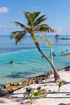 The split, Caye Caulker, Belize. Enjoy a beer while sitting on a picnic table submerged in water looking at endless blue paradise!
