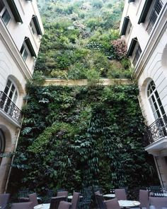 ♂ Green living wall vertical garden Andree Putman interiors - Pershing Hall hotel - Paris