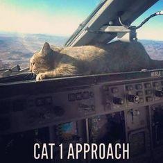 #aviationhumor #cat1approach