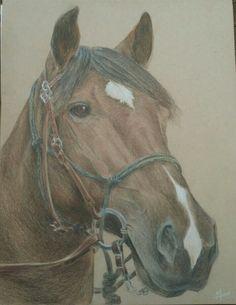 Dozer- Seattle Mounted Patrol Seattle, Sculptures, Horses, Drawings, Artist, Artwork, Painting, Animals, Work Of Art