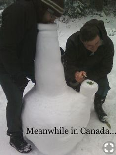 Meanwhile in . Buffalo - From 54 Awesome Meanwhile pics, photos and memes. Smoke Weed, Zombie Tsunami, Meanwhile In Canada, Videos Fun, Funny Videos, Weed Humor, Weed Memes, Stoner Humor, 420 Memes