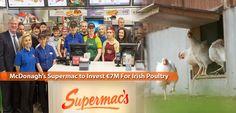 Twitter Poultry, Irish, Investing, Twitter, Backyard Chickens, Irish Language, Ireland