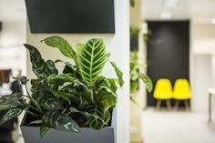 Meet the Designer: Sarah Ellison of Frank & Faber Retro Furniture, Antique Furniture, Blog Design Inspiration, Mid Century Furniture, Meet, Antiques, Plants, Antiquities, Antique