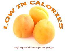 Apricot fact