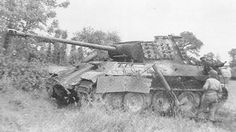 Wrecked Panther