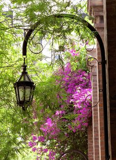 such a pretty sight en the Recoleta neighborhood of Buenos Aires from: Farol y flores by Great Places, Places To See, Beautiful Places, Visit Argentina, Light In, Street Lamp, South America, Lanterns, Scenery