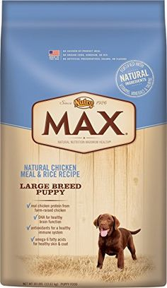 Top 10 Best Dry Dog Foods In 2019 Reviews Best Dry Dog Food Dog