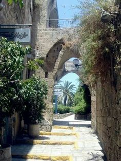 Yafo (Jaffa), Israel That is a Palestinian town, that is why the name is confused here. The real name is (Yaffa) Promised Land, Holy Land, Old City, Countries Of The World, Jaffa Israel, Jerusalem Israel, Places To See, Beautiful Pictures, National Parks