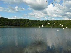 File:Lake Ravelobe, Ankarafantsika National Park, Madagascar.jpg
