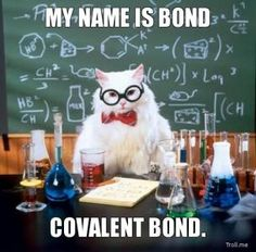 MY NAME IS BOND, COVALENT BOND. | Science / Chemistry Cat | Troll Meme Generator