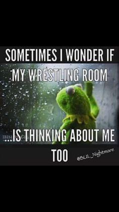 Pin by deanne mcclatchey on wrestling Wrestling Party, Olympic Wrestling, College Wrestling, Wrestling Quotes, Wrestling Team, Wrestling Videos, College Football, Golf Quotes, Sport Quotes