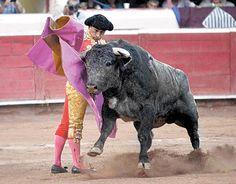 En España: Bien de Interés Cultural, las corridas de toros - Vanguardia