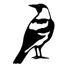 Image result for magpie animal