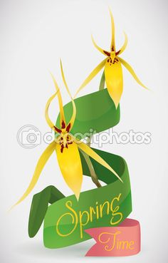 Ribbons and Yellow Orchids for Springtime, Vector Illustration Yellow Orchid, Spring Time, Ribbons, Orchids, Illustration, Bias Tape, Illustrations, Orchid