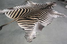 African Gameskin Group (Pty)Ltd Animal Print Rug, Exotic, African, Game, Venison, Games, Gaming, Toy