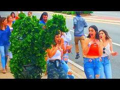 BUSHMAN SCARE PRANK AT FLORIDA GATORS VS SOUTH CAROLINA GAMECOCKS - YouTube South Carolina Gamecocks, Florida Gators, Pranks, Youtube, Practical Jokes, Youtubers