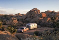 I want to go camping here!!  - Jumbo Rocks Campground, Joshua Tree National Park, California