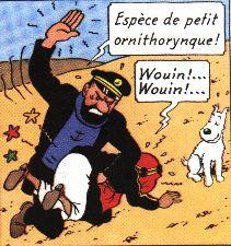 E-Tintin ; Les insultes du capitaine Haddock
