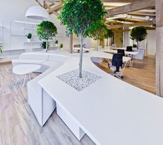 Refreshing Office Interior with Greenery Concept: Chic Office Greenhouse Interior With Modern Lounge Furniture Used White Color Decoration I...