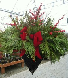 winter decor I am so doing this with my hanging baskets for christmas