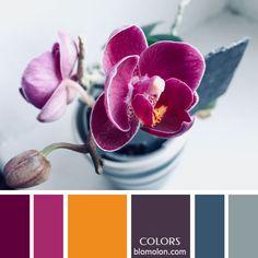 Variedad en color 7 inspiración en color paletas 15... #colours #paletasdecolores #moodboards #color Orange Pink Color, Orange Color Palettes, Colour Pallette, Colour Schemes, Color Combinations, Purple, Color Balance, Color Harmony, Paint Color Combos