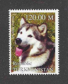 Dog Art Photo Head Portrait Postage Stamp ALASKAN MALAMUTE Turkmenistan 1999 MNH