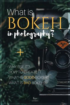Bokeh in Photography? A simple explanation of Bokeh in Photography Dslr Photography Tips, Photography Cheat Sheets, Landscape Photography Tips, Photography Tips For Beginners, Photography Lessons, Photoshop Photography, Iphone Photography, Photography Tutorials, Digital Photography