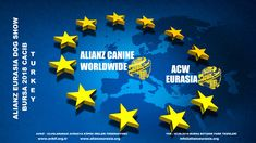 ALIANZ EURASIA DOG SHOW 2018 BURSA TURKEY (CACIB) | Alianz Eurasia Dog Show, Turkey, Flag, Dogs, Art, Art Background, Turkey Country, Kunst, Performing Arts