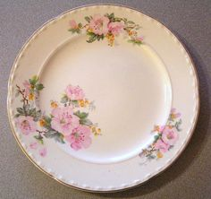 Vintage Crooksville China 10 Dinner Plate Pink by StatonAntiques