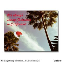 Wish a Merry Christmas to loved ones this holiday season with Christmas cards from Zazzle! Festive greeting cards, photo cards & more. White Christmas, Christmas Cards, Merry Christmas, Christmas Ornaments, It's Always Sunny, Always Be, Photo Cards, Sunnies, Greeting Cards