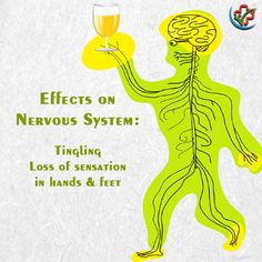 Alcohol is causing permanent damage to your sensations. Effects Of Drinking Alcohol, Alcohol Awareness, Side Effects, Nervous System, Health Care, Alcoholic Drinks, Technology, Tech, Physiology