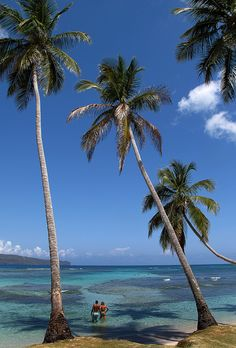 Samana Dominican Republic beach