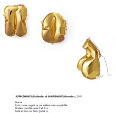 Benjamin Lignel - supplements (gonades) 2011