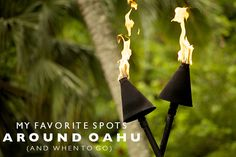 My Favorite Spots Around Oahu (and when to go)