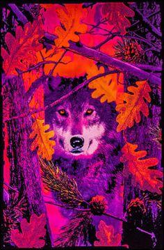 Opticz - Autumn Wolf - Black Light Poster