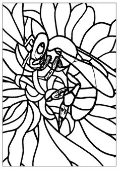 Free Coloring Page Adult Bee Cute To Color With Areas