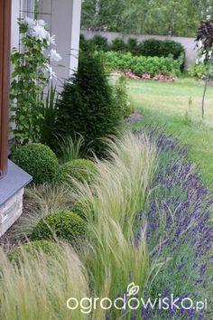 Znalezione obrazy dla zapytania paul bangay stonefields savoy gardens denver victoria australia