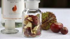 Kaštany ležia takmer všade na jeseň. Nenechajte ho ležať, použite ju pre vaše zdravie! Kraut, Wine, Vegetables, Food, Wellness, Camping, Avocado Seed, Varicose Veins, Natural Remedies