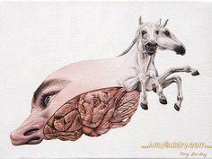 Amy Guidry el surrealismo de la naturaleza