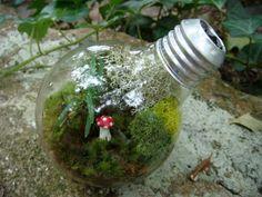 LIGHT BULB Moss and Lichen Terrarium with by MossTerrariums, $27.00
