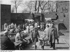 Bildergebnis für leipzig zoo raubtierhaus ddr