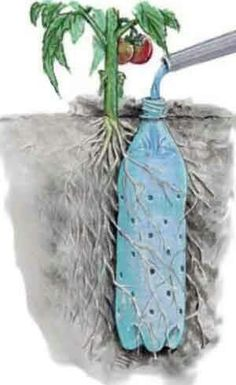 Great watering idea