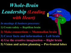 Whole-Brain Leadership (Leading with Heart) In meetings & business processes:In meetings & business processes: 1) Create safety -- Reptilian brain1) Create ...