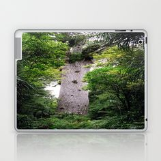 The World's Oldest Wood, Ancient Kauri Laptop & iPad Skin by David Hernández-Palmar - $25.00