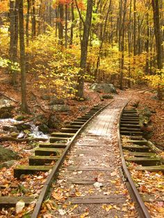 pictures of old railroad tracks | Old train tracks through the mountains. | Old Bridges, Train Bridges ...