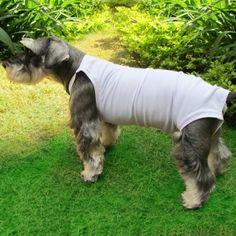 Roupa Cirúrgica - futon dog & home