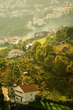 The Serra da Estrela: exploring Portugal¡¯s ¡®star mountain¡¯ Lonely Planet, Algarve, Las Azores, Parque Natural, Portuguese Culture, Mountain Village, Travel Brochure, Nature Aesthetic, Travel Info
