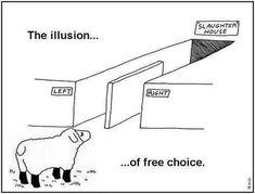 Sheeple voting Democrat or Republican